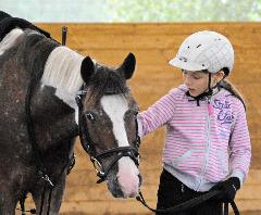 Daikiro von der Reitschule Christinenhof - ein Knabstrupper Pony Tigerschecke