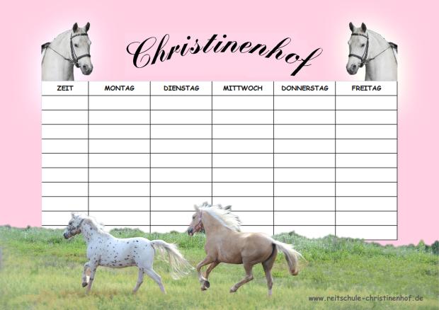 Pferde Stundenplan zum Download und Ausdrucken (mit Pferd und Pony)